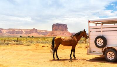 horse-and-trailer-crossing-state-lines-canyon
